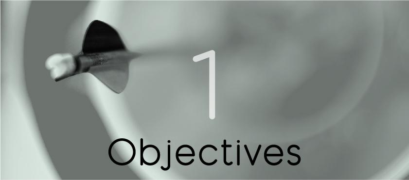 Project objetives